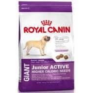 Royal Canin Giant Junior Active - Джайнт Юниор Актив корм для щенков гигантских пород