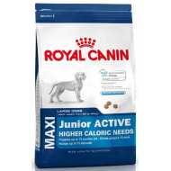 Royal Canin Maxi Junior Activ -для щенков   с высокими энергетическими потребностями с 2 до15/18 мес