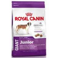 Royal Canin Giant Junior - Роял Канин Джайнт Юниор корм для щенков гигантских пород