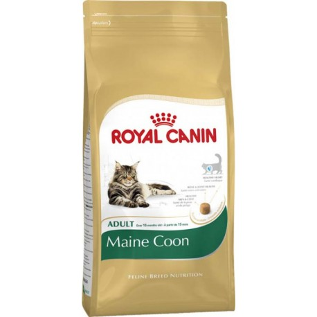 Royal Canin Maine Coon 31 - Роял Канин Майн Кун корм для кошек