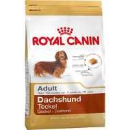 Royal Canin Dachshund Adult - Роял Канин для породы Такса  от 10 месяцев