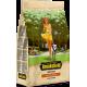 BROOKSFIELD корм для взрослых собак Говядина/рис