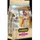BROOKSFIELD корм для взрослых собак мелких пород Говядина/рис