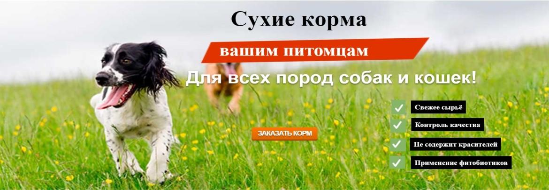 Корм Биско - прекрасный выбор для хозяев, которые любят и заботятся о своих питомцах!